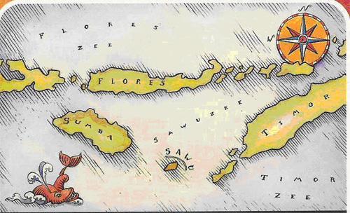 Sawu - Indonesische archipel